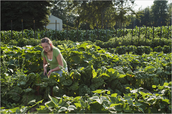 Alexandra Rau works in her garden